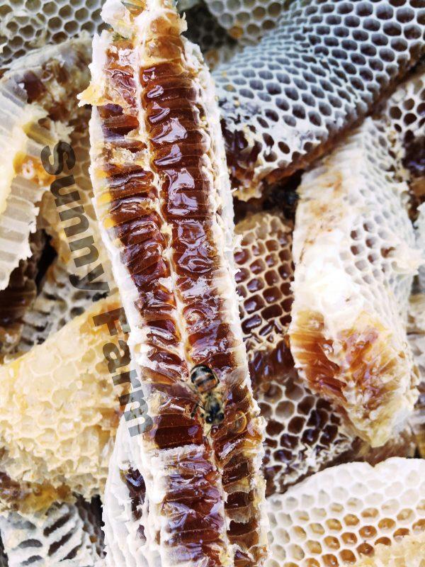Avoca Honey có màu hổ phách đâmj và giàu chất chống oxi hóa. khoáng chất và vitamin